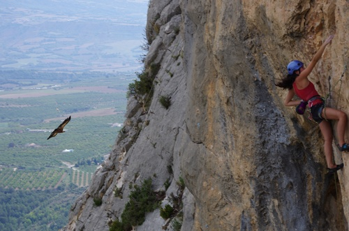 climbing with vultures